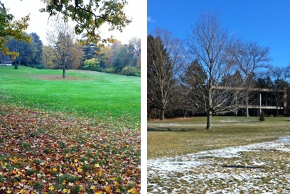 A ring of leaves is replaced with snow.