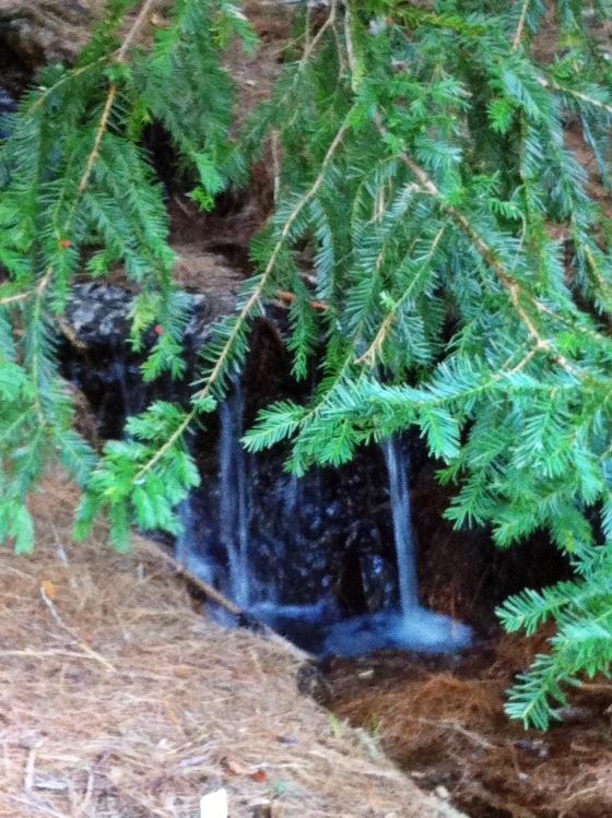 wellesley college secret garden waterfall2