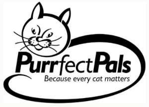 purrfect pals