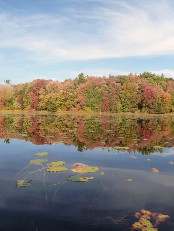 8-640 rocky pond vertical autumn