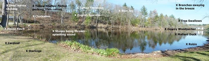 panoramic photo (uses first and third photo)2-720