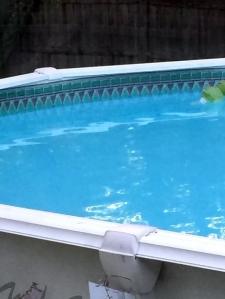 old pool